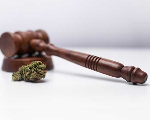 drug-decriminalization