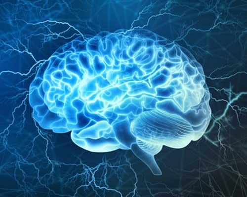 xanax-and-the-brain